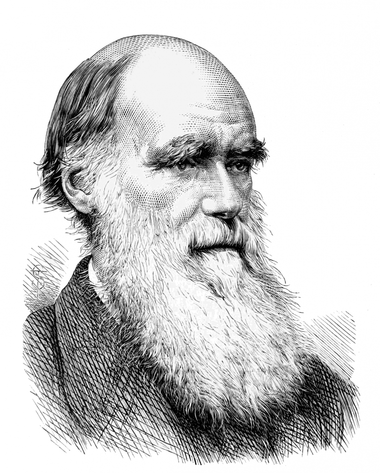 Darwin Portret