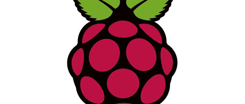 01_raspberry-pi-logo_cdr