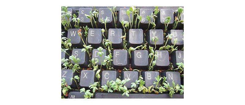 klávesnice_jako_květináč