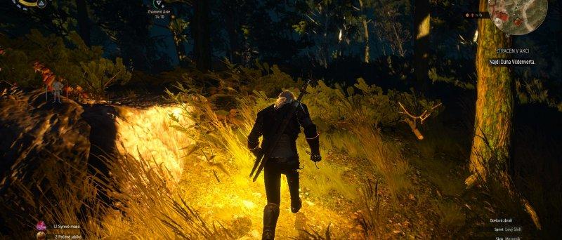 Witcher 3 Wild Hunt Screenshot 109