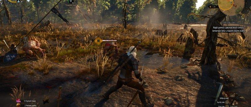 Witcher 3 Wild Hunt Screenshot 110