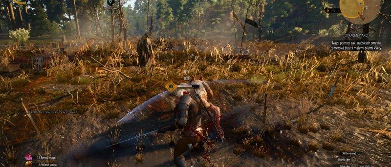 Witcher 3 Wild Hunt Screenshot 111