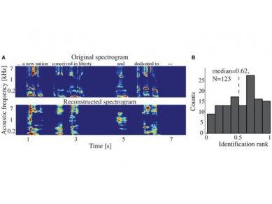 Spektrogram Mozek