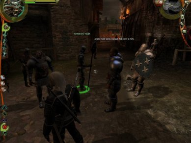 Witcher 2007 3