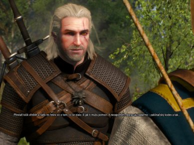 Witcher 3 Wild Hunt Screenshot 103