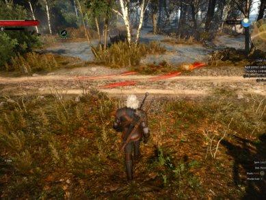 Witcher 3 Wild Hunt Screenshot 104