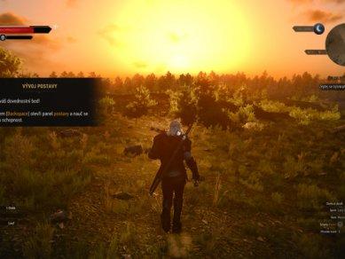 Witcher 3 Wild Hunt Screenshot 106