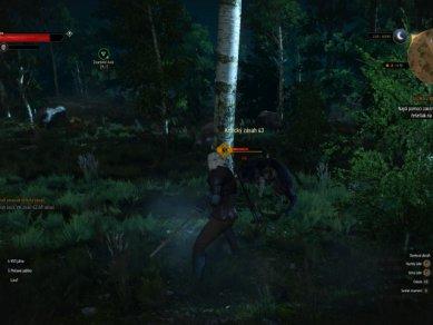 Witcher 3 Wild Hunt Screenshot 108