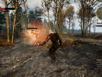 Witcher 3 Wild Hunt Screenshot 112