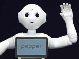 Pepper Robot 2