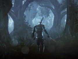 The Witcher 3 Wild Hunt Screenshot Gc 2013 03