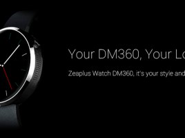 Zeaplus Dm 360 1